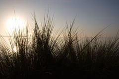 日出海滩风景4 库存图片