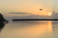 日出的大沼泽地国家公园 免版税库存照片