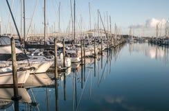 日出的奥克兰Westhaven小游艇船坞 免版税库存照片