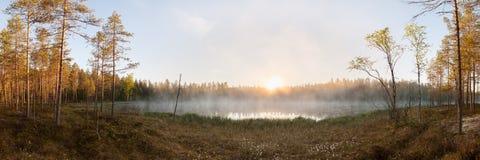 日出的小森林湖 免版税库存图片