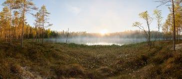 日出的小森林湖 免版税库存照片