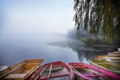 日出的湖 免版税图库摄影