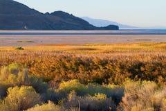日出的羚羊海岛 免版税库存照片