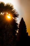 日出通过在剪影吴哥窟的树 库存图片