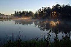 日出通过树 库存图片