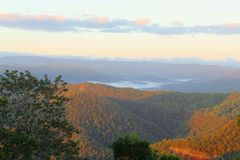 日出颜色在Tamborine山国家公园,澳大利亚 免版税库存照片