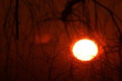 日出,大,通过低云 黎明 免版税库存照片