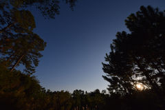 日出,小,与低云 黎明 免版税库存照片