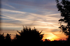 日出,树篱末端,英国 库存图片