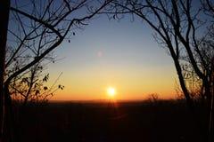 日出, nyc,通过被成拱形的树 图库摄影