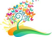 日出蝴蝶结构树 库存图片