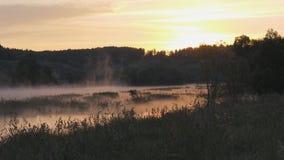 日出 雾房子横向早晨剪影结构树 在天空的早晨和它的河的含水表面上的反射 抽象早晨自然夏天墙纸 影视素材