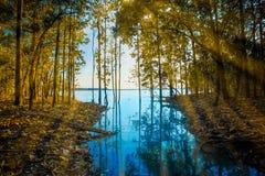 日出-黎明,湖,黎明,太阳,河岸 图库摄影