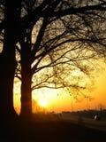 日出 图库摄影