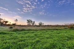 日出pantanal 免版税库存图片