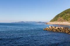日南市海岸线在宫崎,九州,日本 免版税库存照片
