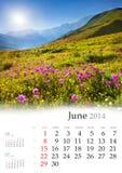 2014日历。6月。 库存图片