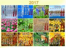 日历在2017年在与十二自然照片的乌克兰语  免版税库存图片