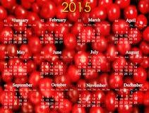 日历在2015年在红色樱桃的背景 库存图片