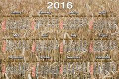 日历在2015年在麦田背景 库存照片