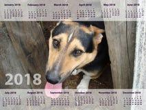 日历在2018年 一条狗与 库存图片