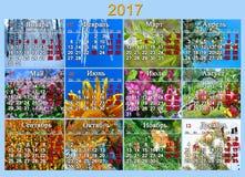 日历在2017年用有十二自然照片的俄语  库存图片