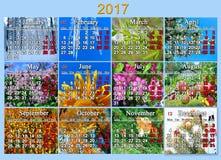 日历在2017年用英语与十二自然照片  免版税库存图片