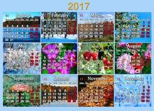 日历在2017年用英语与十二自然照片  库存照片
