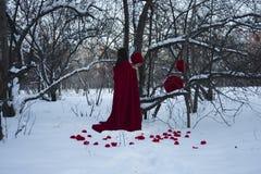 日历概念日期冷面万圣节愉快的藏品微型收割机说大镰刀身分 由树的一个火热的巫婆 免版税库存照片