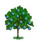 日地球例证结构树 库存图片