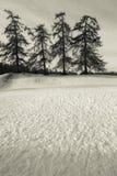 日多雪的冬天 库存图片