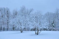 日平静的冬天 库存照片