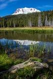 日志和芦苇在Hat湖,拉森国家公园` 免版税库存图片