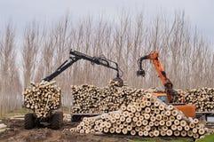 日志和柴堆的起重机 图库摄影