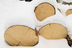 日志堆杉木 库存图片