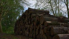 日志堆 林业树开发 影视素材