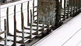 日志的运输的货物铁路支架 侧视图 影视素材