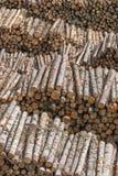 日志被堆积的堆 免版税库存照片