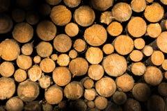 日志被堆积的木头 图库摄影