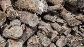 日志被堆积的木材 图库摄影
