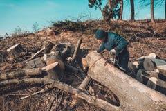 日志记录器砍灰树从锯的到木头,并且为冬天期间做准备 图库摄影