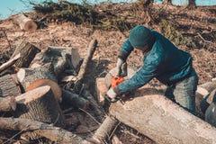 日志记录器砍灰树从锯的到木头,并且为冬天期间做准备 免版税库存图片