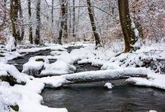 日志通过一条溪在多雪的森林里 免版税库存图片