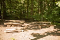 日志长凳在森林里 免版税库存照片