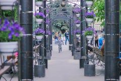 日托米尔,乌克兰- 2015年9月03日:一个连续男孩的剪影曲拱的 图库摄影