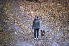 日托米尔,乌克兰- 2017年10月19日:使用与狗,顶视图的女孩 库存照片
