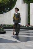 日摩尔达维亚战士胜利 库存图片