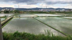 日本乡下在奈良 股票视频