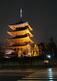 日本京都晚上寺庙toji 库存照片