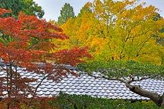 日本京都Tofukuji有鸡爪枫树的寺庙屋顶为 图库摄影